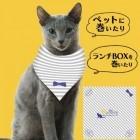 【終了】映画「猫は抱くもの」良男ガラバンダナプレゼントのお知らせ!