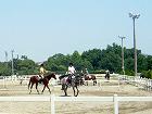 『名鉄乗馬クラブ・クレイン東海』乗馬体験チケットプレゼントのお知らせ