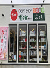 シャディサラダ館つづき.png